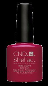 shellac gel polish